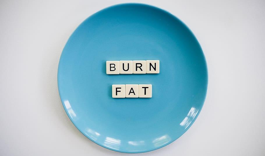 Fat Burning Diet Plans