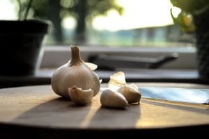Garlic - Fat Burning Herbs And Spices