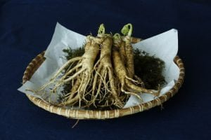 Ginseng Plant For Weight Loss