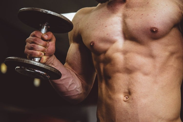 Should I Burn Fat Or Build Muscle First?
