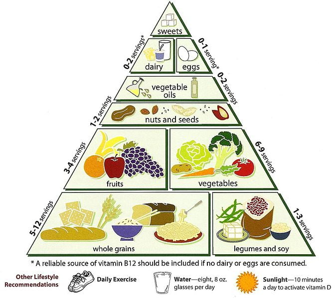 What is a Food Pyramid